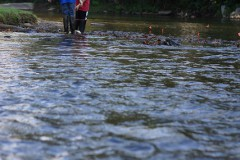 A pair of students use a D net on the North Toe River