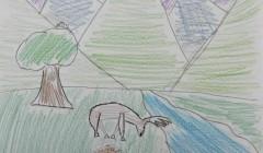 Honorable Mention: Natalie Calkins – 6th Grade