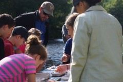 Mark Endries helps students identify insects