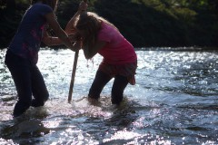 Students collecting invertebrates in the North Toe River