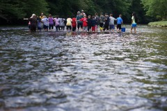 Yancey County students collecting fish