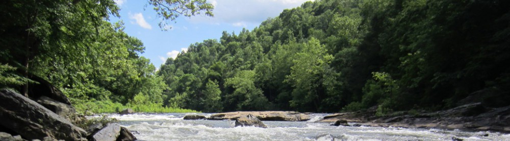 Toe River Watershed Partnership